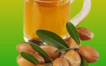 Beneficios del Aceite de Argan – ¿Que es el Argan?